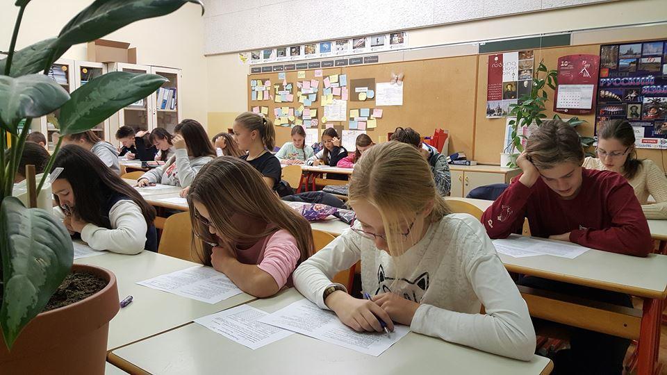 Ruski medvedek v Sloveniji 2017